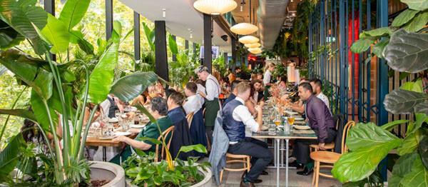 Wedding Reception venue at Green Moustache, North Sydney